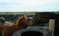 An equitarian?