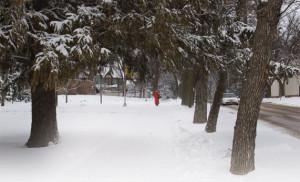 p30-Sidewalk-in-the-snow-book