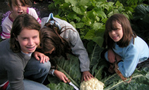 A portion of the community garden in Estelline is set aside for these youngsters, who learn about growing their own food.