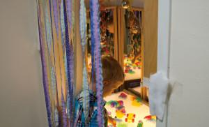 p10-preschool-ribbons-4c-0331