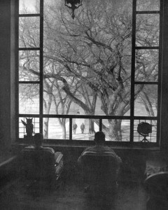 Students relax on the stairway landing in Lincoln Library, with the famous old Feather Elm framed by the picture window waiting out the winter of 1957-58.