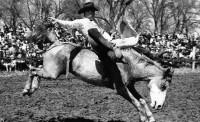 Don Reichert made SDSU Rodeo Club history